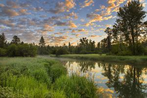 The Whitefish River at Sunrise Reflecting in Whitefish, Montana by Chuck Haney