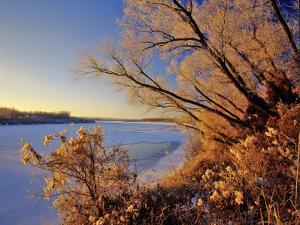Winter on the Yellowstone River Near Cartwright, North Dakota, USA by Chuck Haney