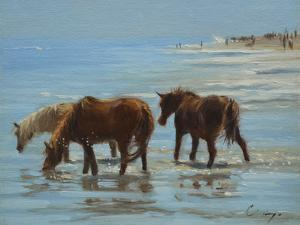 Chincoteague Ponies by Chuck Larivey