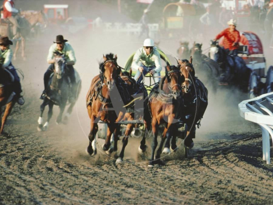Chuck Wagon Race, Calgary Stampede, Alberta, Canada Photographic Print by  Paolo Koch | Art com