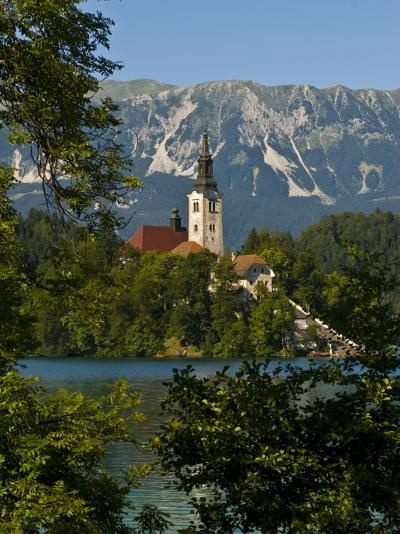 Church of the Assumption on Bled Island in Bled Lake, Bled, Slovenia, Europe-Michael Runkel-Photographic Print