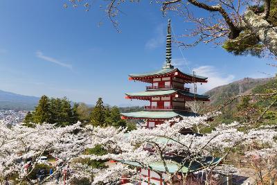Chureito Pagoda Between Blossoming Cherry Trees, Arakura-Yama Sengen-Koen Park, Chubu Region-P. Kaczynski-Photographic Print
