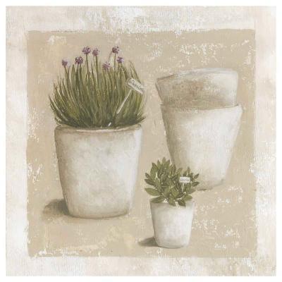 Ciboulette en Pot-V?ronique Didier-Laurent-Art Print