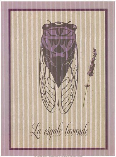 Cigale Lavande--Art Print