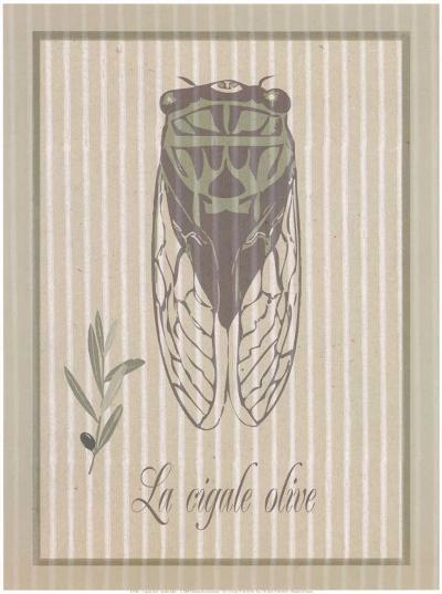 Cigale Olive--Art Print