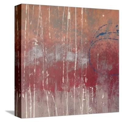 Cimarron-Denise Duplock-Stretched Canvas Print