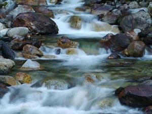 Rocky Stream by Cindy Kassab