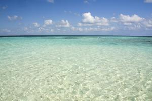 Clear Water View of the Caribbean Sea, Goff Caye, Belize by Cindy Miller Hopkins