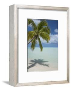 Cook Islands, Aitutaki. One Foot Island. White Sand Beach with Trees by Cindy Miller Hopkins