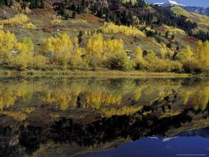 Fall Reflections in Pond, Telluride, Colorado, USA by Cindy Miller Hopkins