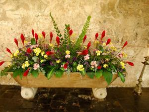 Flowers in Former Colonial Convent, Casa Santo Domingo Hotel, Antigua, Guatemala by Cindy Miller Hopkins