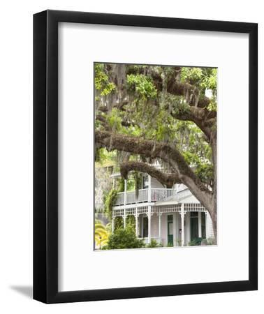 Historic Home with Spanish Moss-Covered Oak Tree, Fernandina Beach, Amelia Island, Florida, Usa