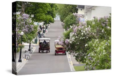 Lilac Lined Street with Horse Carriage, Mackinac Island, Michigan, USA