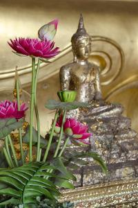 Lotus Flowers, Golden Buddha Statue, Phra Mongkonbophit, Ayutthaya, Thailand by Cindy Miller Hopkins