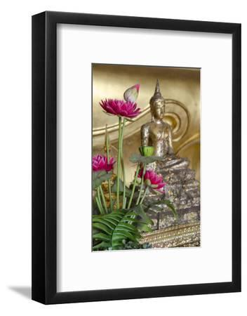 Lotus Flowers, Golden Buddha Statue, Phra Mongkonbophit, Ayutthaya, Thailand