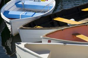Maine, Rockland. Colorful Row Boats in Rockland Marina by Cindy Miller Hopkins
