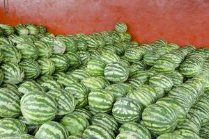 Municipal Market Watermelons for Sale, Manaus, Amazon, Brazil by Cindy Miller Hopkins