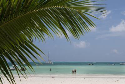 Seychelles, Praslin. Cote D'Or, one of the most beautiful beaches on the island. by Cindy Miller Hopkins