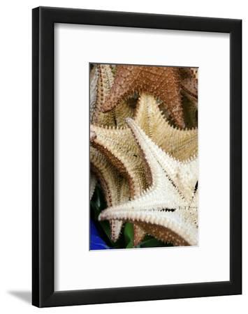 Souvenir Starfish and Seashells for Sale, Livingston, Guatemala
