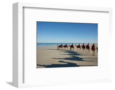 Western Australia, Broome, Cable Beach. Camel Ride on Cable Beach