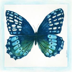 Butterfly I by Cindy Shamp