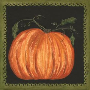 Pumpkin by Cindy Shamp
