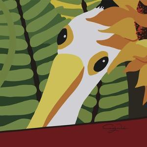 Peeping Pelican by Cindy Wider