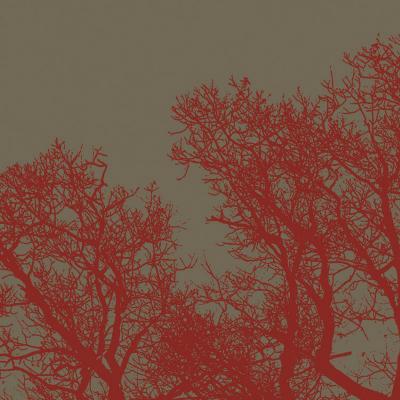Cinnamon Tree I-Erin Clark-Art Print