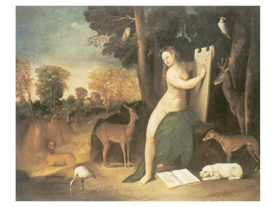 Circe And Her Lovers In A Landscape-Dosso Dossi-Premium Giclee Print