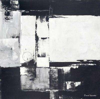 Circles on Black and White I-David Sedalia-Art Print