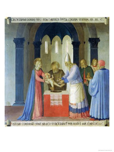 Circumcision of Jesus, Story of the Life of Christ-Fra Angelico-Giclee Print