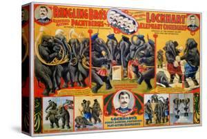 Circus Poster, 1899
