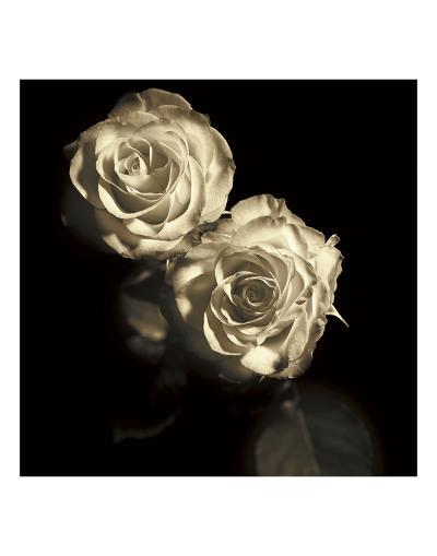 Circus Roses-Michael Harrison-Art Print