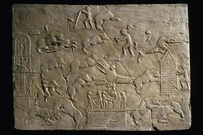 Circus Scenes, Bas-Relief--Giclee Print