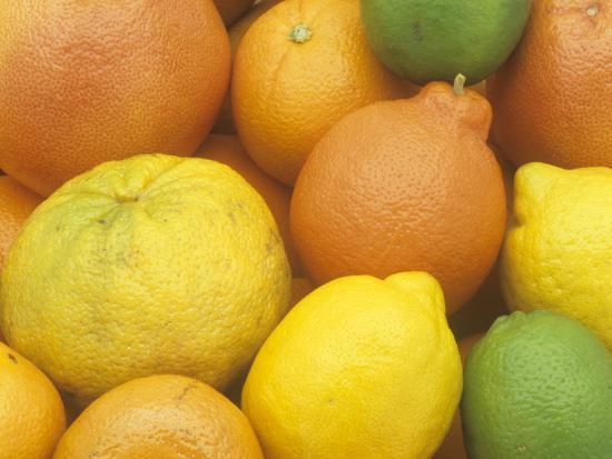 Citrus Fruits  Grapefruit, Tangerine, Ugli, Orange, Lemon, Lime, Tangelo  and Clementine Photographic Print by Wally Eberhart | Art com