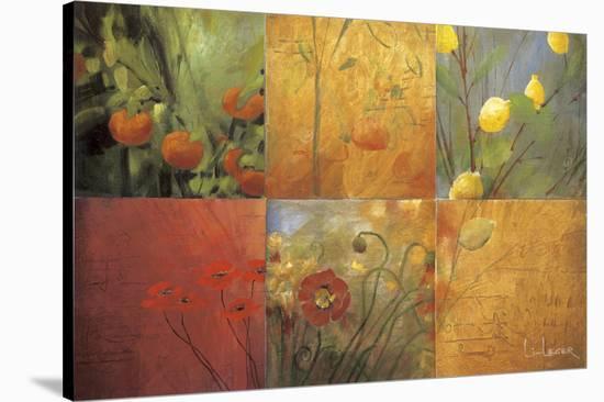Citrus Garden-Don Li-Leger-Stretched Canvas Print