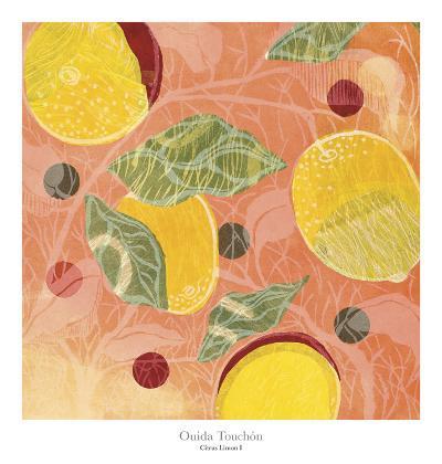 Citrus Limon I-Ouida Touch?n-Art Print