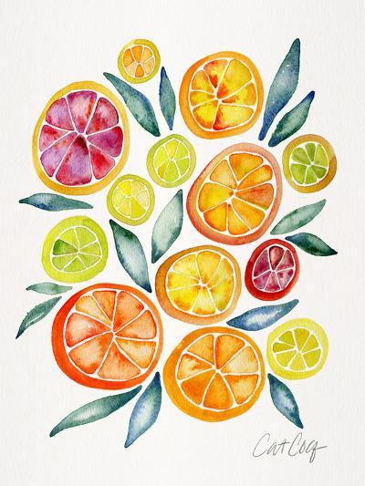 Citrus Slices-Cat Coquillette-Art Print