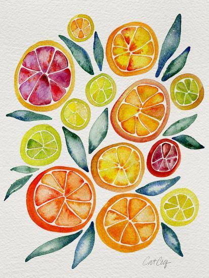 Citrus Slices-Cat Coquillette-Giclee Print