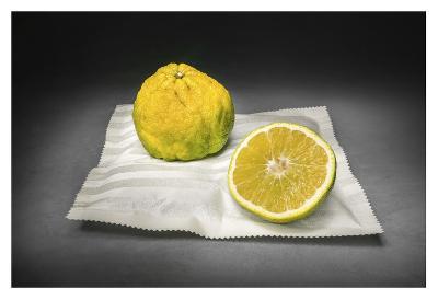 Citrus-Christophe Verot-Giclee Print