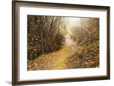 City Creek Bridge-Romona Murdock-Framed Photographic Print