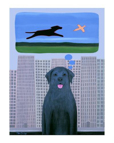 City Dog With Country Dreams-Ken Bailey-Collectable Print