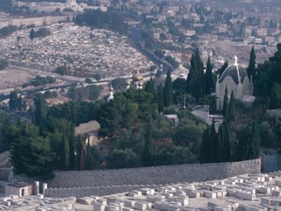 City on a Mountain - Israel, Jerusalem, Valley of Kidron, Garden of Gethsemane