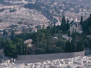City on a Mountain - Israel, Jerusalem, Valley of Kidron, Garden of Gethsemane