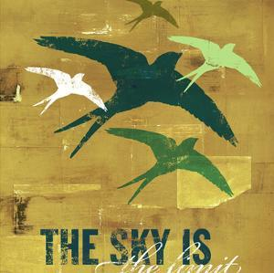 The Sky is the Limit 3 by CJ Elliott