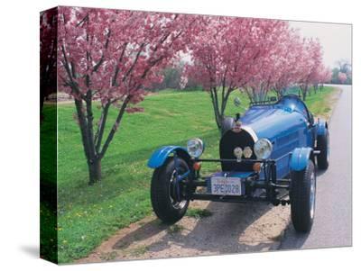 Bugatti Racecar and Cherry Blossoms