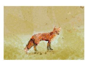 Butterfly Fox by Claire Westwood