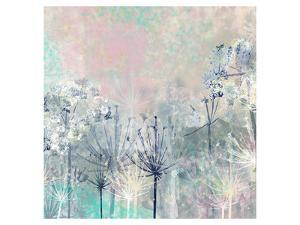 Cow Parsley blues by Claire Westwood