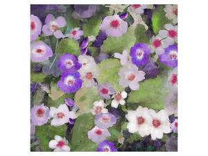 Dusty Primrose by Claire Westwood