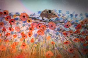 Little Shrew by Claire Westwood